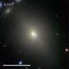 IC1411