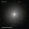NGC3919