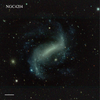 NGC4204