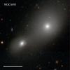 NGC4493