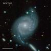 NGC7102