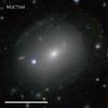 NGC7164