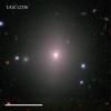 UGC12336