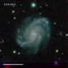 UGC4431