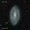 UGC7331
