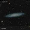 UGC7697