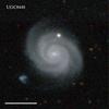 UGC8448