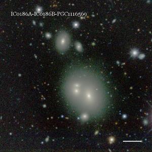 IC0186A-IC0186B-PGC1116569
