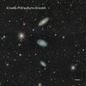IC0269-PGC928470-IC0268