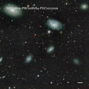 NGC0829-PGC008184-PGC1012109