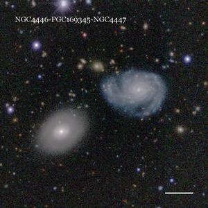 NGC4446-PGC169345-NGC4447