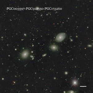 PGC003597-PGC914550-PGC173260