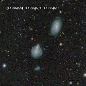 PGC004644-PGC004639-PGC004646