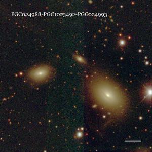 PGC024988-PGC1023492-PGC024993