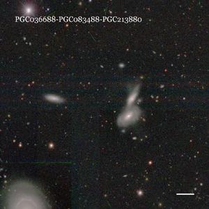 PGC036688-PGC083488-PGC213880
