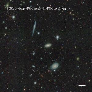 PGC1036047-PGC1036361-PGC1036593
