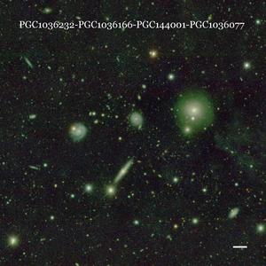 PGC1036232-PGC1036166-PGC144001-PGC1036077
