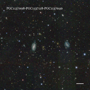 PGC1137098-PGC1137118-PGC1137040
