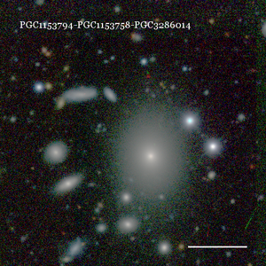 PGC1153794-PGC1153758-PGC3286014