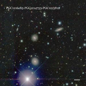 PGC1216185-PGC1214753-PGC1215812