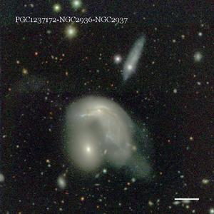 PGC1237172-NGC2936-NGC2937