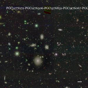 PGC1277072-PGC1276506-PGC1276831-PGC1276067-PGC1276571