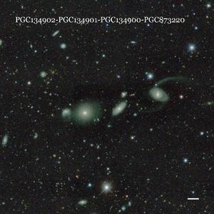 PGC134902-PGC134901-PGC134900-PGC873220