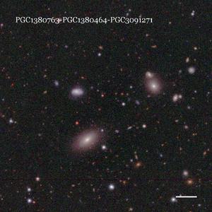PGC1380763-PGC1380464-PGC3091271