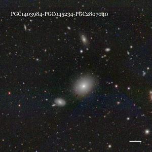 PGC1403984-PGC045234-PGC2807040
