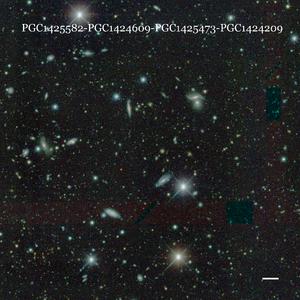 PGC1425582-PGC1424609-PGC1425473-PGC1424209