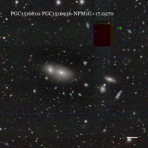 PGC1516810-PGC1516936-NPM1G+17.0270