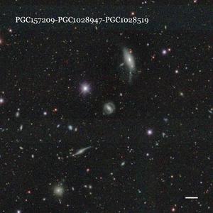 PGC157209-PGC1028947-PGC1028519