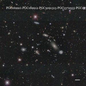 PGC169911-PGC169912-PGC3091315-PGC1372553-PGC1371787-PGC1371853