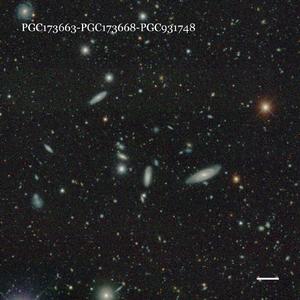 PGC173663-PGC173668-PGC931748