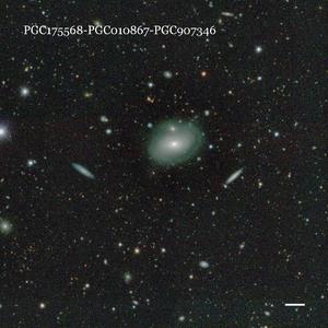 PGC175568-PGC010867-PGC907346
