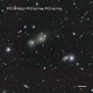 PGC1878557-PGC057794-PGC057793