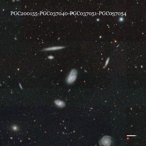 PGC200155-PGC037040-PGC037051-PGC037054