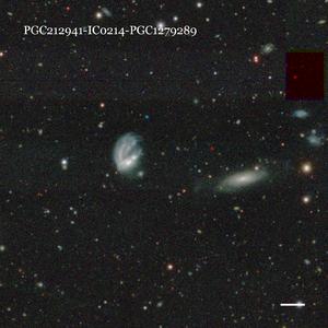 PGC212941-IC0214-PGC1279289