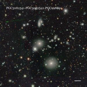 PGC3082541-PGC3082542-PGC998891