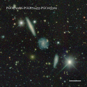 PGC872286-PGC872455-PGC165369