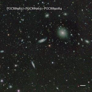 PGC889837-PGC889631-PGC889084