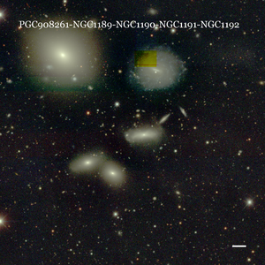 PGC908261-NGC1189-NGC1190-NGC1191-NGC1192