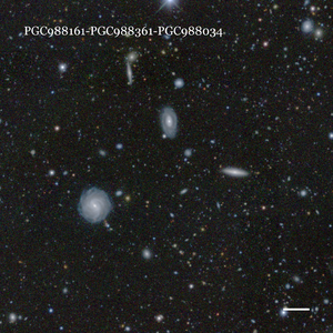 PGC988161-PGC988361-PGC988034