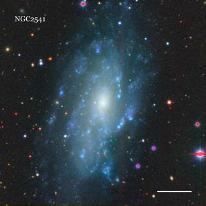 NGC2541