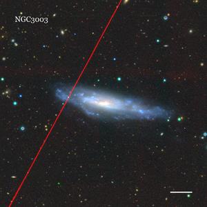NGC3003