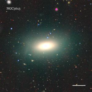 NGC3613