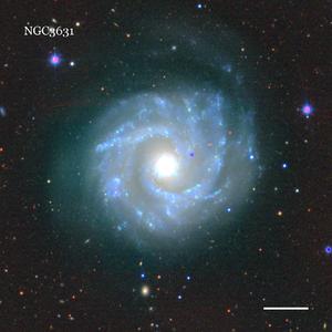 NGC3631