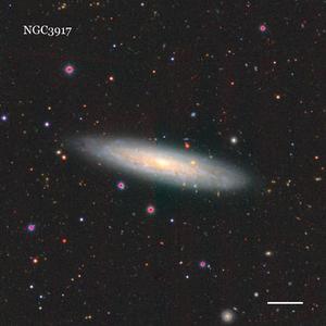NGC3917