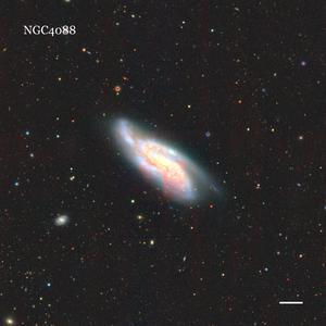 NGC4088