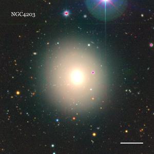 NGC4203
